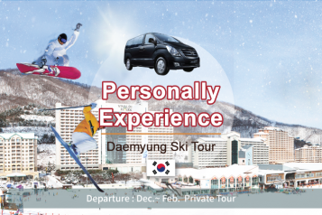 Ski 1D Private Tour