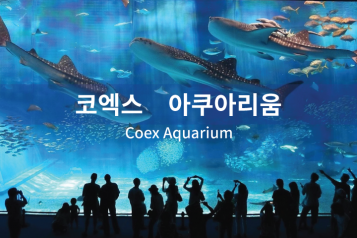 COEX Aquarium Ticket