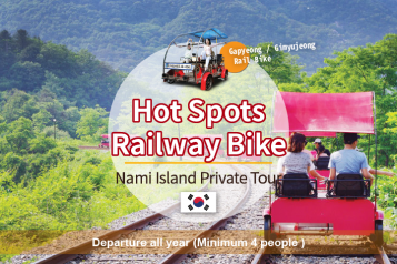Nami Island Private Day Tour
