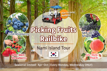Railbike Juicy Seasonal Fruits & Nami Island Day Tour