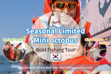 Mini octopus boat fishing festival day tour